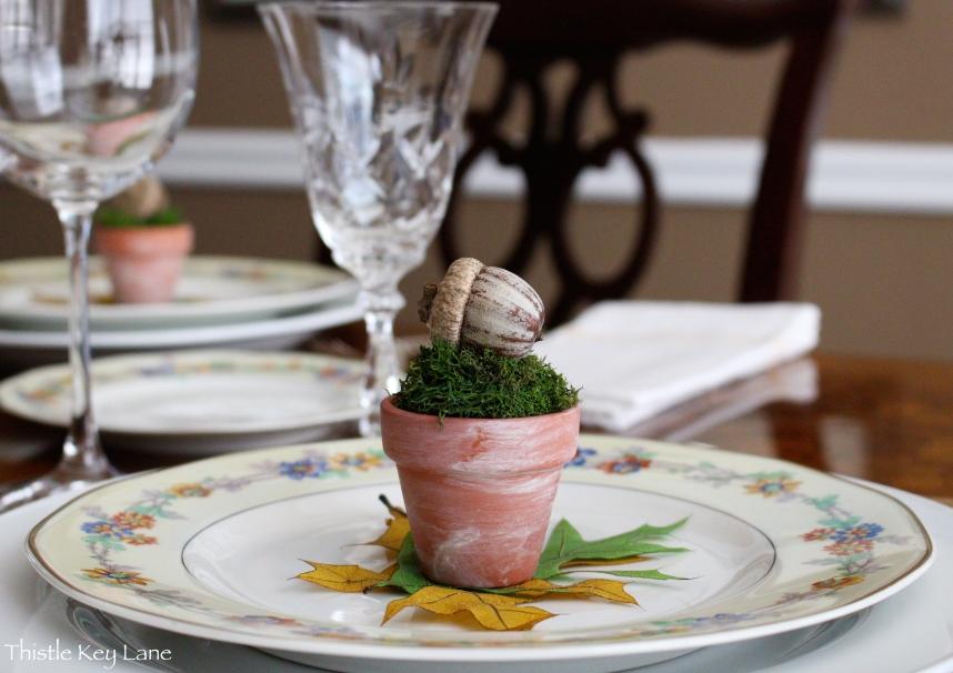 Terra-cotta pot with deer moss and a fat little acorn.
