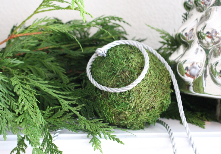 Silver rope winds around the moss sphere