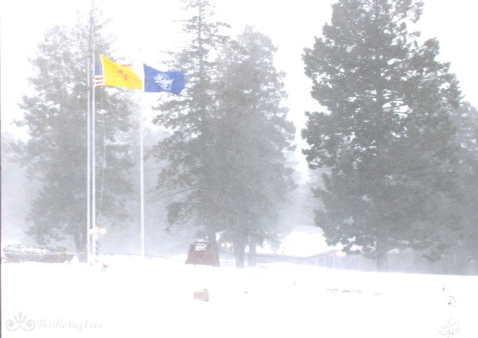 Blizzard Conditions at The Lodge
