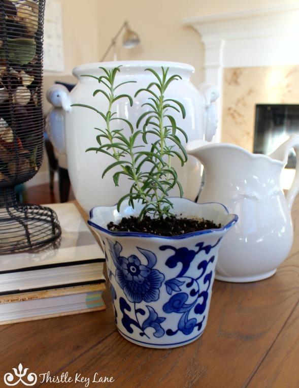 Add plants indoors