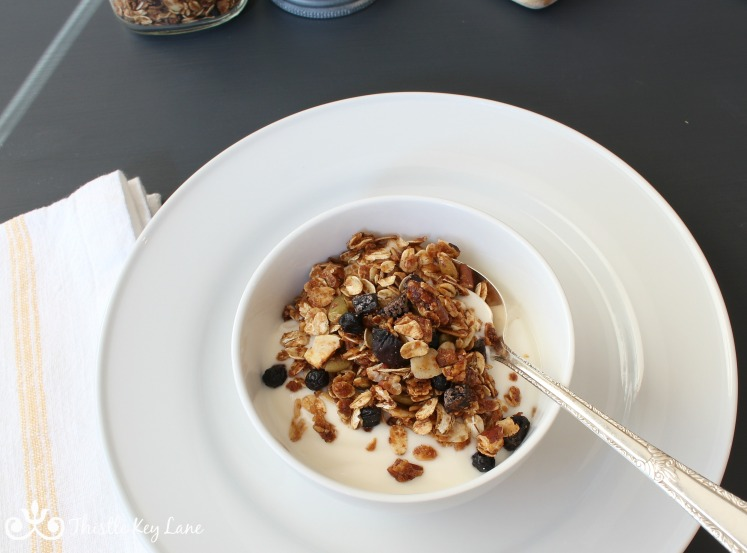 white-bowl-plate-granola-blueberry-figs
